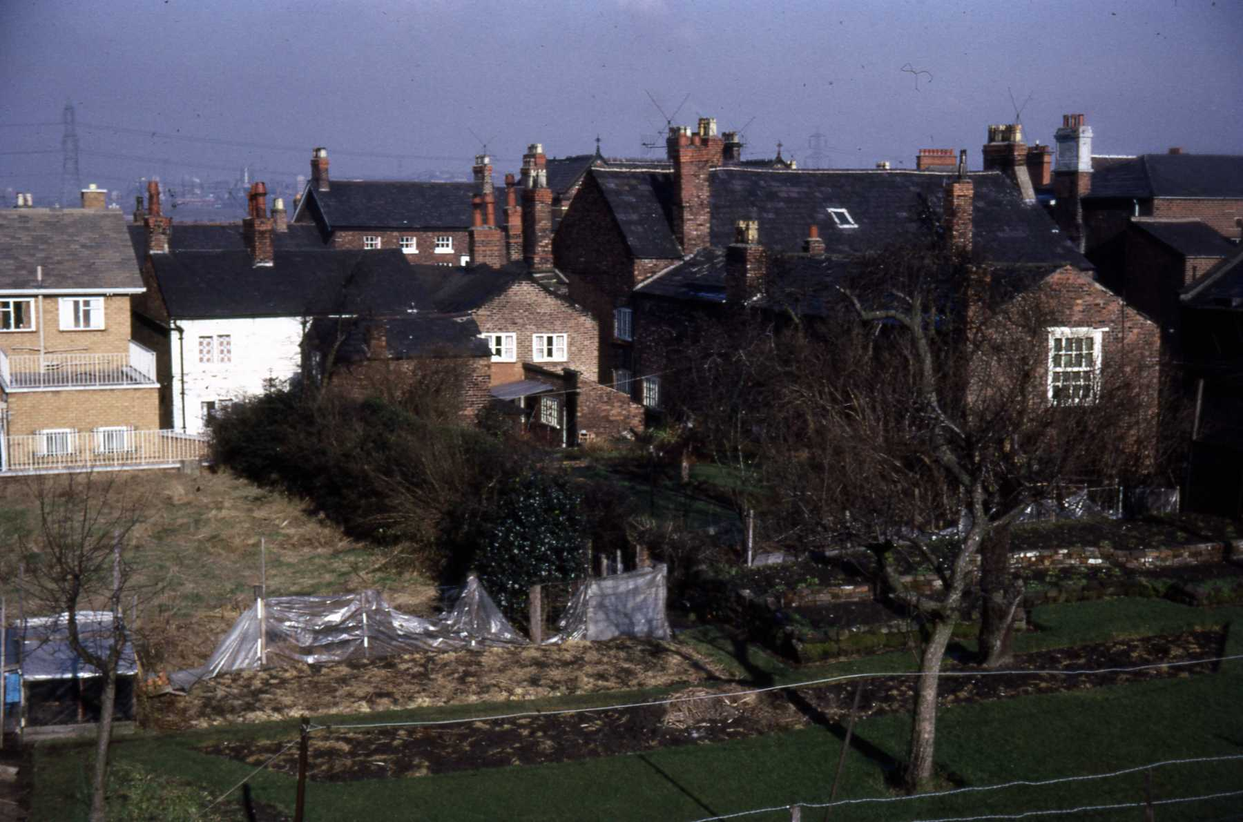 D4 048 Burgage plot rear of Queen's Head, Watch Shop (Les Harris) etc 1968.jpg
